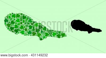 Vector Map Of Pico Island. Collage Of Green Grape Leaves, Wine Bottles. Map Of Pico Island Collage D