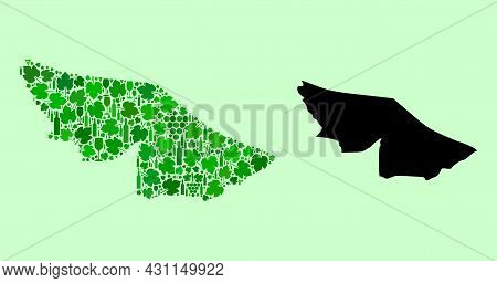 Vector Map Of Acre State. Mosaic Of Green Grape Leaves, Wine Bottles. Map Of Acre State Mosaic Forme