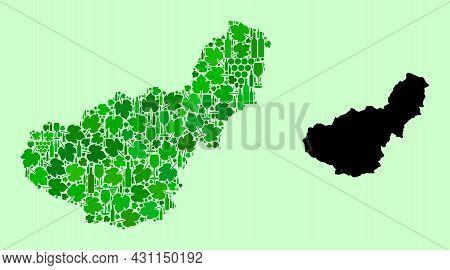 Vector Map Of Granada Province. Combination Of Green Grape Leaves, Wine Bottles. Map Of Granada Prov