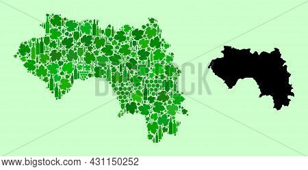 Vector Map Of French Guinea. Composition Of Green Grape Leaves, Wine Bottles. Map Of French Guinea C