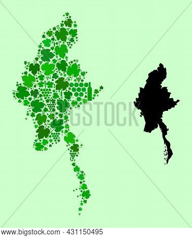 Vector Map Of Myanmar. Collage Of Green Grape Leaves, Wine Bottles. Map Of Myanmar Collage Formed Wi