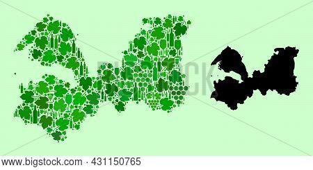 Vector Map Of Leningrad Region. Mosaic Of Green Grapes, Wine Bottles. Map Of Leningrad Region Mosaic