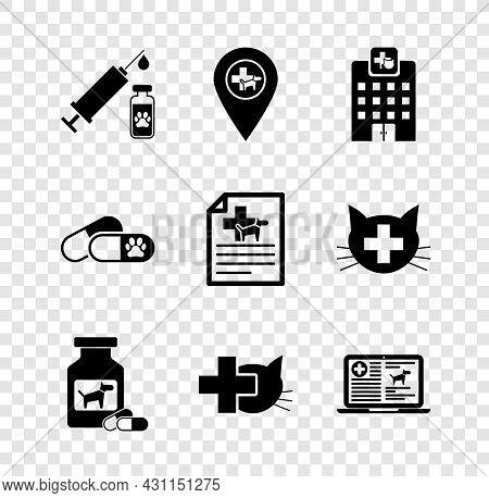 Set Syringe With Pet Vaccine, Location Veterinary, Veterinary Medicine Hospital, Dog Bottle And Pill
