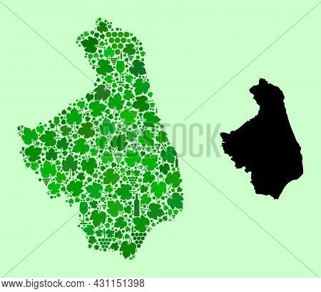 Vector Map Of Podlasie Province. Collage Of Green Grape Leaves, Wine Bottles. Map Of Podlasie Provin