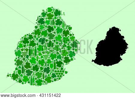 Vector Map Of Mauritius Island. Combination Of Green Grape Leaves, Wine Bottles. Map Of Mauritius Is