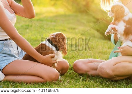 Breeders Mother And Daughter Walk In Backyard With Pets. Puppies Cavalier King Charles Spaniel With