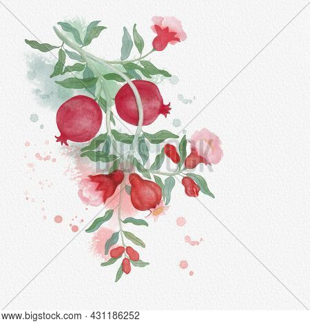 Red Ripe Pomegranate Fruit Illustration Watercolor Brush Drawing On Red And Green Color Splash And W