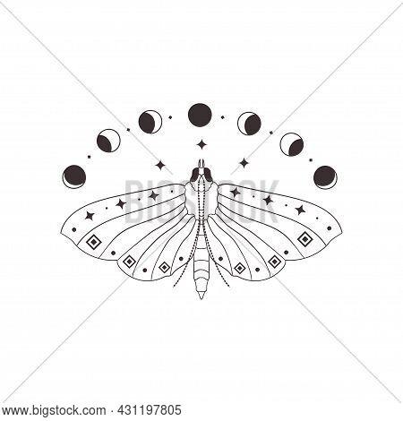 Divine Beauty Premade Logo Design. Black Butterfly