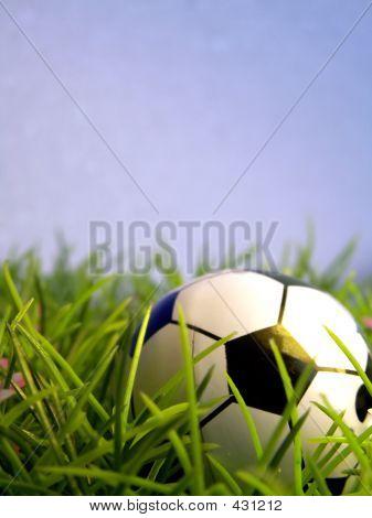 Fußball-Weltmeister