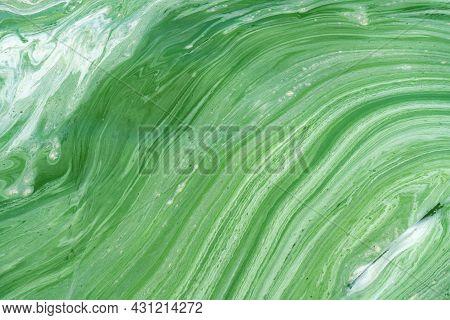 Water Pollution By Blooming Blue-green Algae (cyanobacteria) On Dnieper River At Kremenchug Reservoi