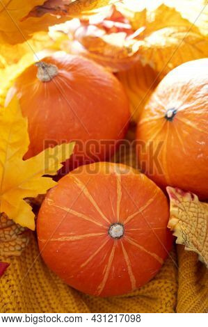 Pumpkins On Yellow Knitted Background. Autumn Cozy Concept, With Three Orange Pumpkins, Leaves
