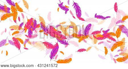 Orange Purple Pink Red Feather Floating Background