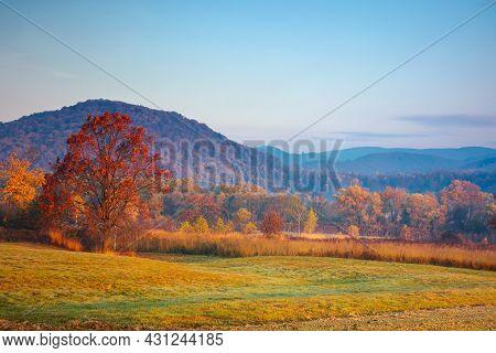 Autumnal Rural Landscape At Sunrise. Beautiful Mountainous Countryside In Late Autumn Season. Empty