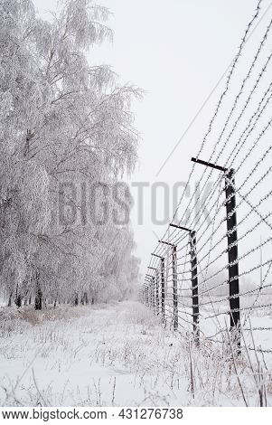 Barbed Wire Fence Covered With Frost Winter Time