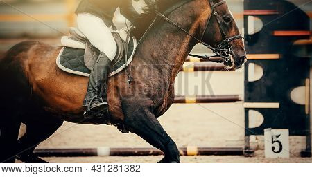 The Leg Of The Rider In The Stirrup, Riding On A Horse. Stirrup Close-up The Horse Overcomes An Obst