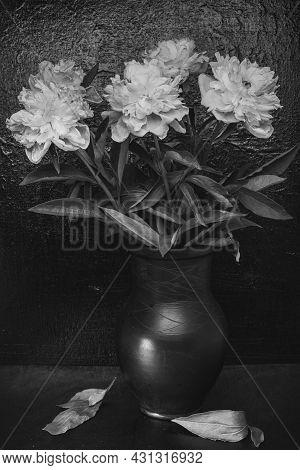 Still Life Flowers- Science Leaves Botanical. Kitchen Still Photo