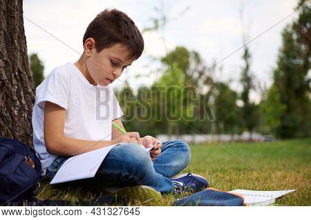Adorable Clever Preadolescent Schoolchild, Handsome Boy Doing Homework, Writing On Workbook, Sitting