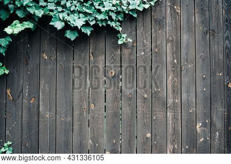 Dark Wood Background. Dark Grain Panel Board Table With Copy Space. Old Floor Wooden Pattern With Gr