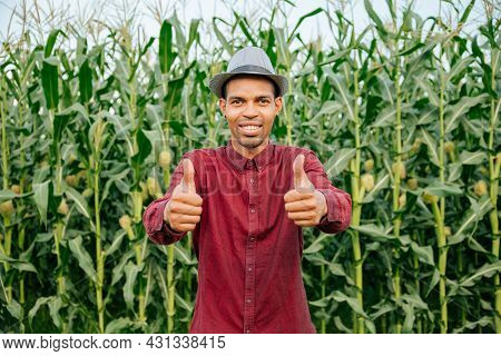 Portrait Joyful Afro American Man Is Smiling With Hat Thumbs Up Feeling Confident Stading In Corn Fi