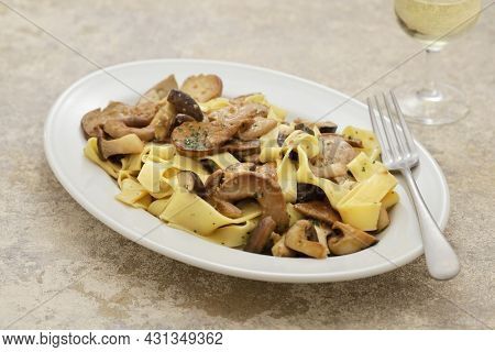 homemade pappardelle pasta with porcini mushrooms