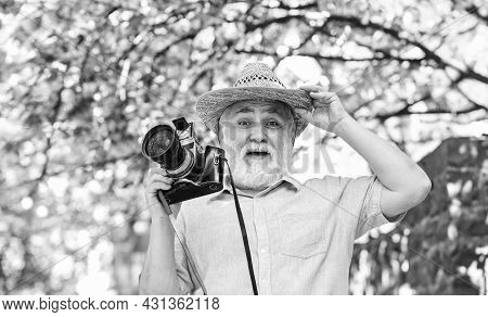 Amazing Summer. Photographer Taking Photo Of Apricot Bloom. Spring Season With Pink Flower. Old Man