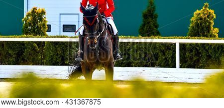 Beautiful Girl On Black Horse In Jumping Show, Equestrian Sports. Dark Horse And Girl In Uniform Goi