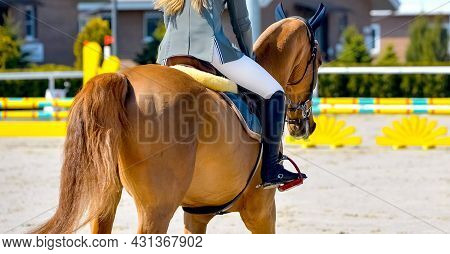 Beautiful Girl On Sorrel Horse In Jumping Show, Equestrian Sports. Light-brown Horse And Girl In Uni