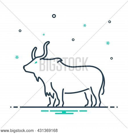 Mix Icon For Yak Herbivores Aggression Cattle Bull Horn Buffalo Nature Animal Jungle Wildlife Zoo