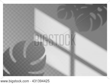 Shadow Overlay. Realistic Window Light With Shade Texture Of Tropical Plant Leaves. Decorative Sunli