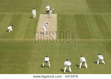 Countu Cricket