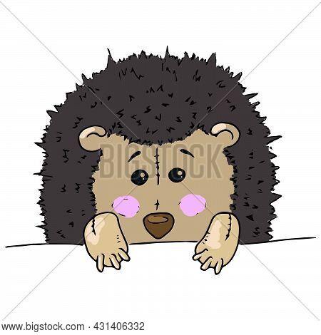 Hedgehog Toy. Vector Illustration Of A Toy Fabric Hedgehog. Hand Drawn Soft Toy Hedgehog.