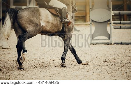 Equestrian Sport. Galloping Horse.the Legs Of A Horse Galloping, Rear View. Dressage Of Horses In Th