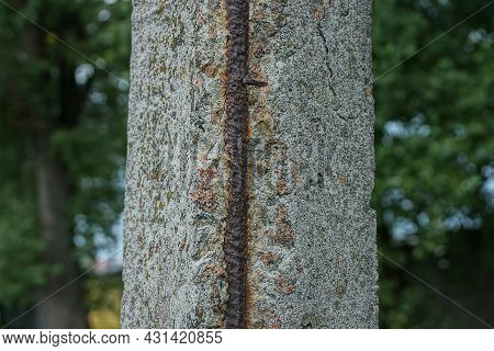 Part Of A Broken Gray Old Concrete Pillar With Brown Iron Rusty Rebar On The Street Against A Green