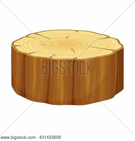 Tree Trunk Or Timber Cross Section Vector Illustration