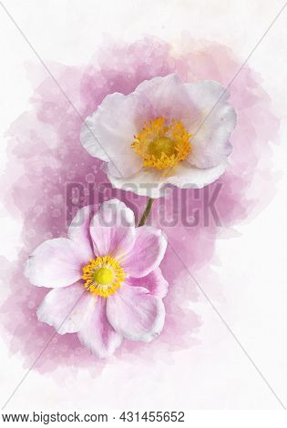 Watercolor Painting Of A Anemone Hupehensis Flower, Known As The Chinese Anemone Or Japanese Anemone