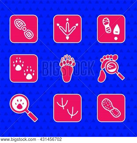Set Bear Paw Footprint, Dove, Human Footprints Shoes, Magnifying Glass With Footsteps, Paw Search, A