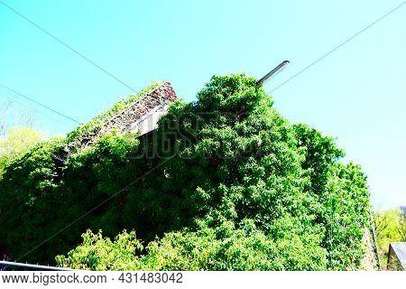 Valley Of The 13 Mills Near Kattenes In Mosel Valley, Eifel Side