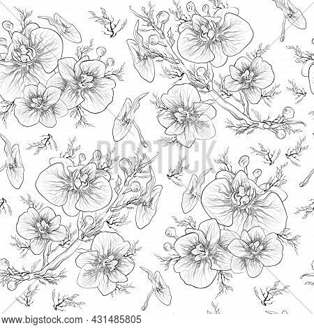Floral, Seamless Botanical Pattern, Orchid Flower Isolated On White Background. Monochrome, Pattern.