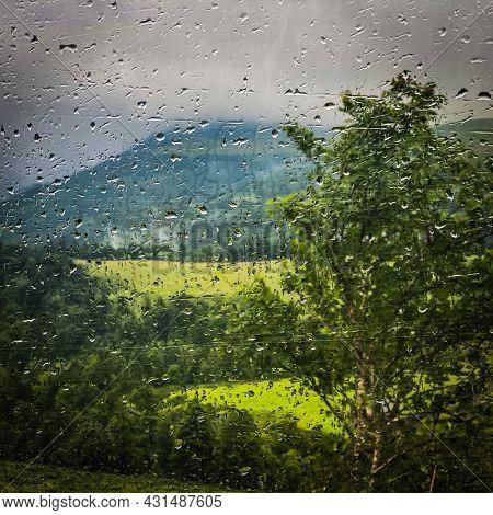 Melancholy countryside view seen through an window car, France