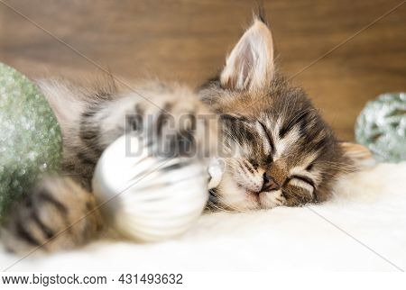 Small Kitten Sleep On A White Soft Blanket With Christmas Balls