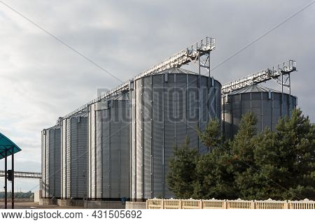 Modern Granary Elevator And Seed Cleaning Line.