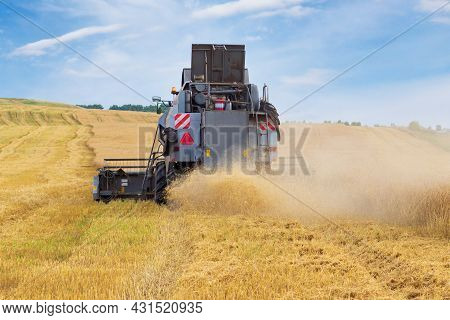 Harvesting Wheat Harvester On A Summer Day. Agricultural Machinery Harvests Cereals In The Field At