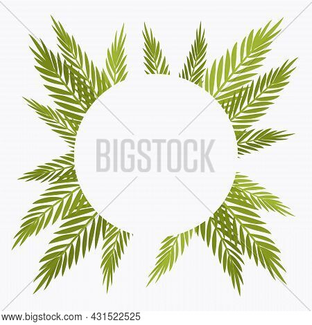 Palm Tree Round Background, Copyspace For Tropical Themed Card Decor. Green Tropical Leaves, Jungle