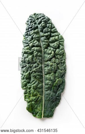 Popular Tuscan Kale Salad Isolated On White Background.