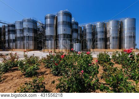 Modern Winery. Stainless Steel Barrels For Wine Fermentation And Roses