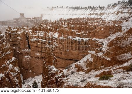 Fresh Snow Over Bryce Amphitheater From The Rim Trail