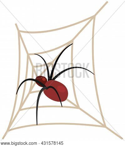 Huge Spider Sits On Spiderweb With Top View, Vector Halloween, Scary And Haunted Elements. Dangerous