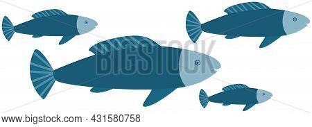 Underwater Ocean Fauna With Big Fishes. Ocean With Marine Life Reprsentatives. Marine Underwater Wor