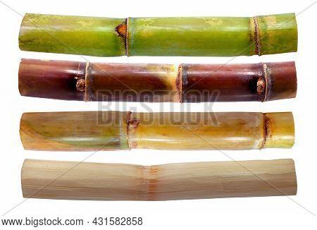 Set Of Sugarcane Isolated On White Background