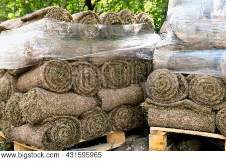 Grass Turf Rolls Piled Up On The Moscow Street During Road Repairs In Summer